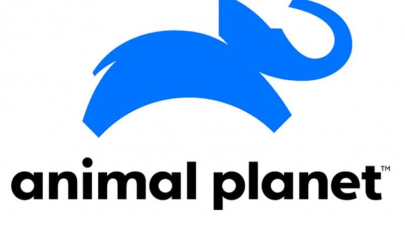 Animal Planet refreshes programming line-up, launches Tamil